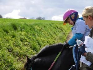 rallye-equestre-2016j