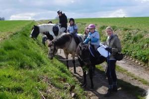rallye-equestre-2016l